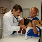 Routine Checkups